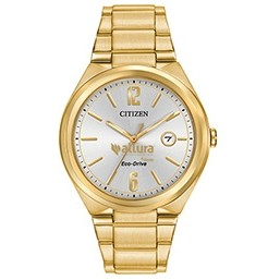 Men's Citizen� Eco-Drive Gold Watch (Silver Tone Dial)